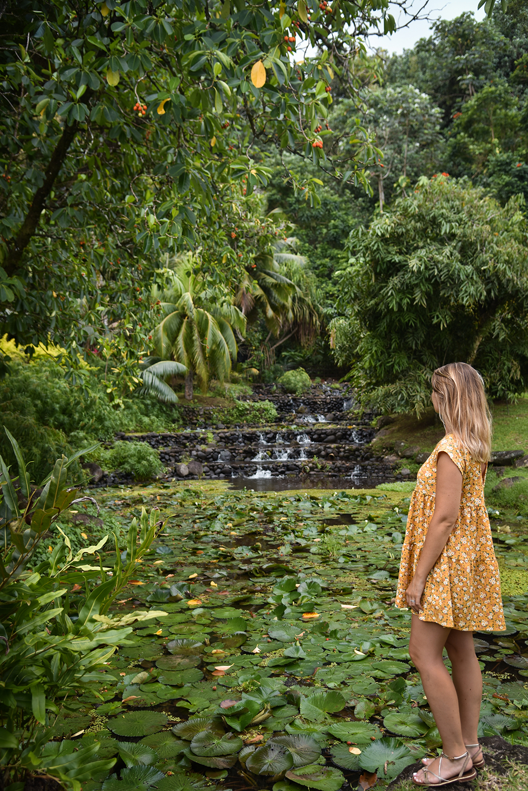 Balade au Jardin d'eau de Vaipahi à Tahiti