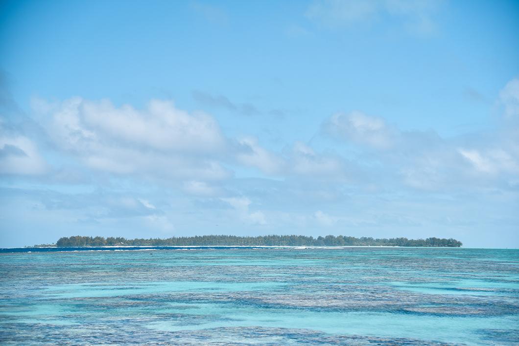 Que faire en Polynésie Française ? Visiter Tetiaroa, l'île paradisiaque et sauvage