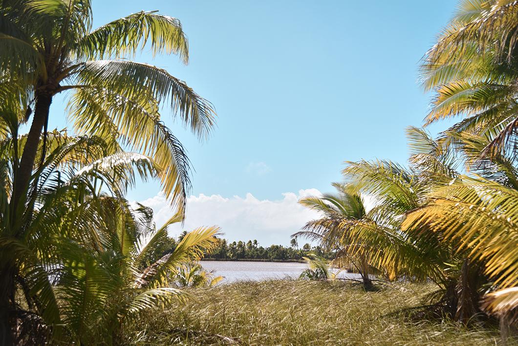 Visiter Tetiarioa, l'île privé de Marlon Brando