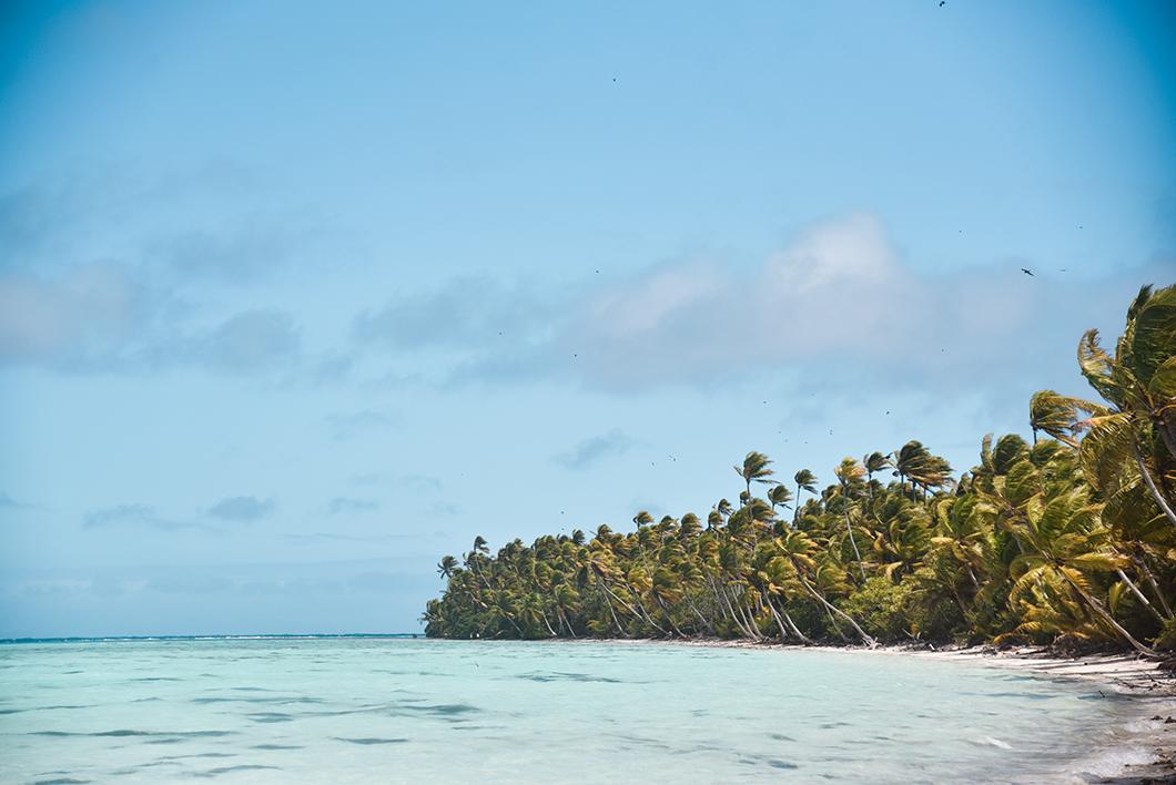Que faire en Polynésie Française ? Découverte de l'île de Tetiaroa en une journée