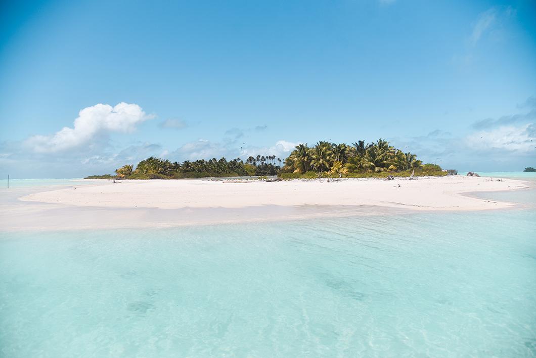 L'île aux oiseaux à Tetiaroa en Polynésie Française