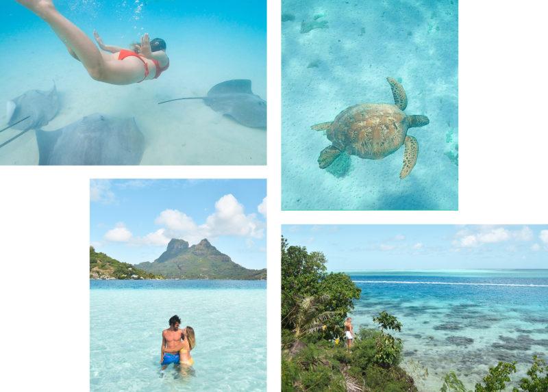 Activités incontournables en Polynésie Française