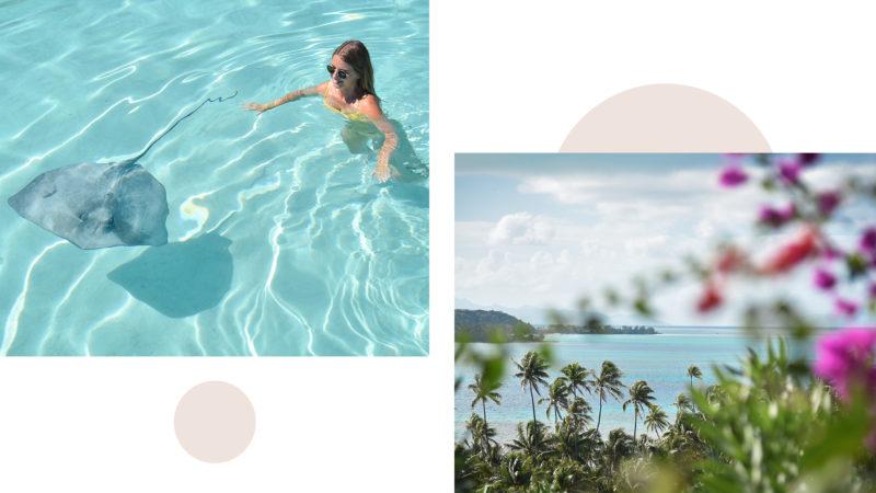 Visites à faire en Polynésie Française