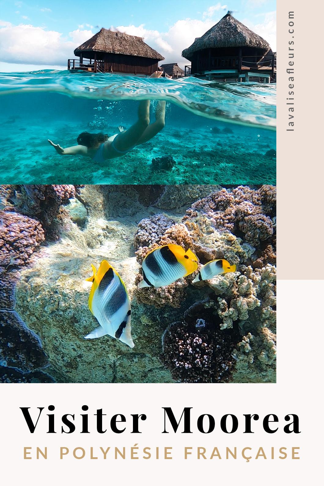 Que visiter à Moorea en Polynésie Française ?