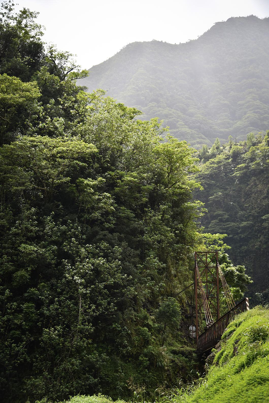 Visiter la Vallée de Papenoo à Tahiti en 4x4