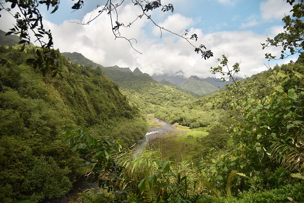 Vallée de Papenoo, incontournables à Tahiti