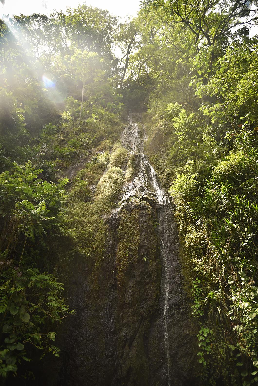 Voir les cascades de la Vallée de Papenoo à Tahiti