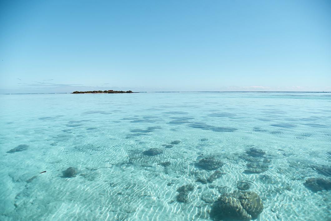 Découvrir le lagon de Moorea en bateau, activité incontournable
