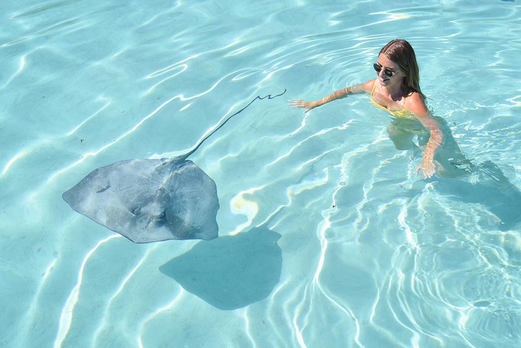 Nager avec les raies, activité incontournable à Moorea