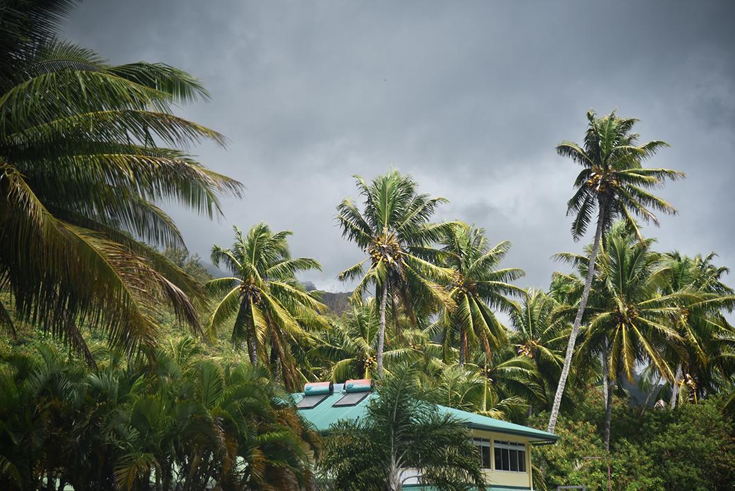 Visiter l'île de Moorea en voiture