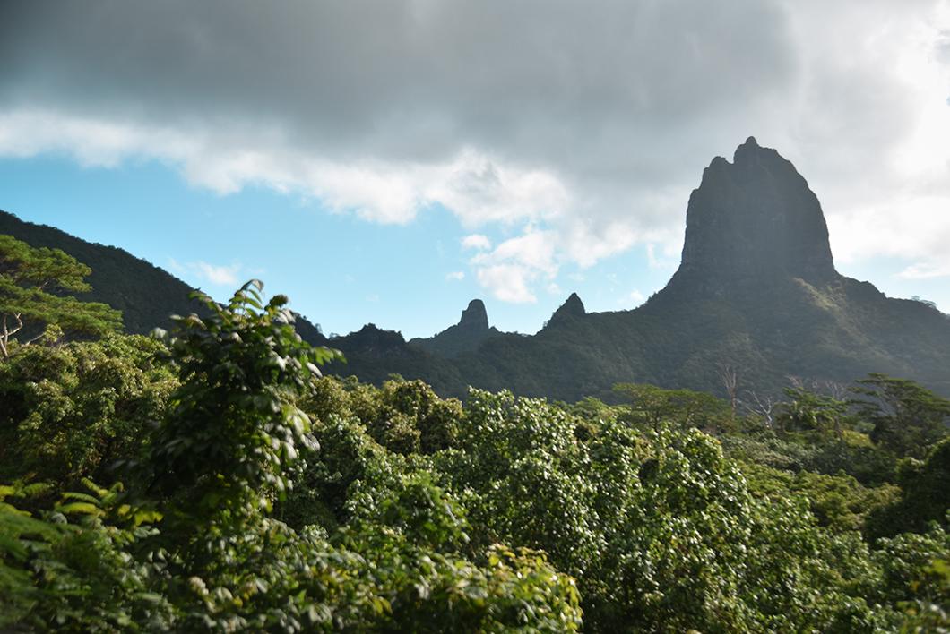 Visiter Moorea, notre île coup de coeur en Polynésie Française