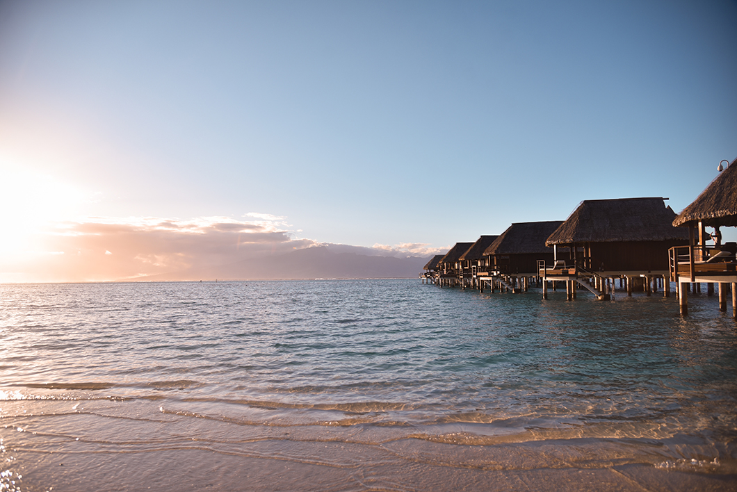 Temae, Ta'ahiamanu, Tipaniers, de Tiahura… les plus belles plages de Moorea