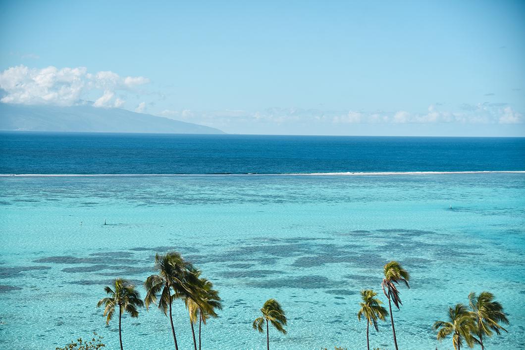 Les magnifiques nuances de couleurs du lagon de Moorea