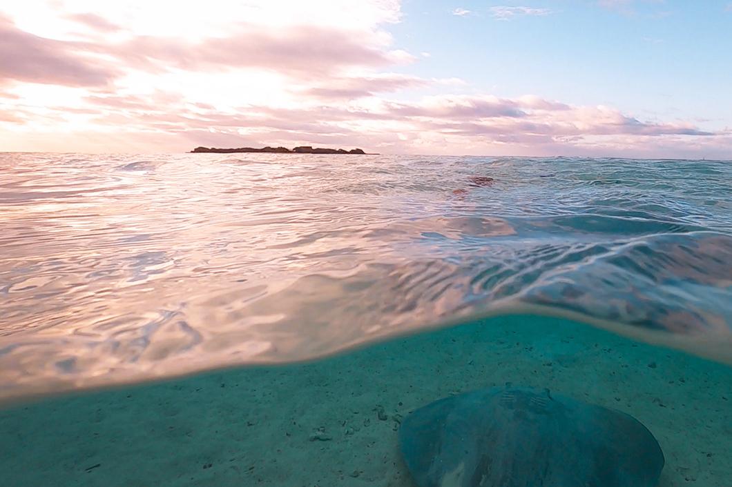 Excursion «coucher de soleil» avec Lagoon Explorer