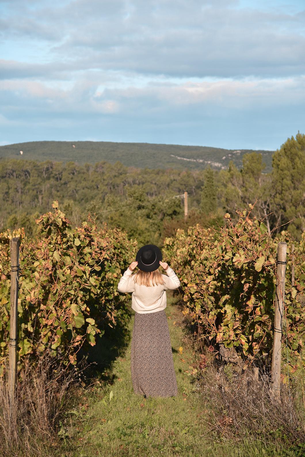 Les vignes du Domaine de Gressac en Provence Occitane