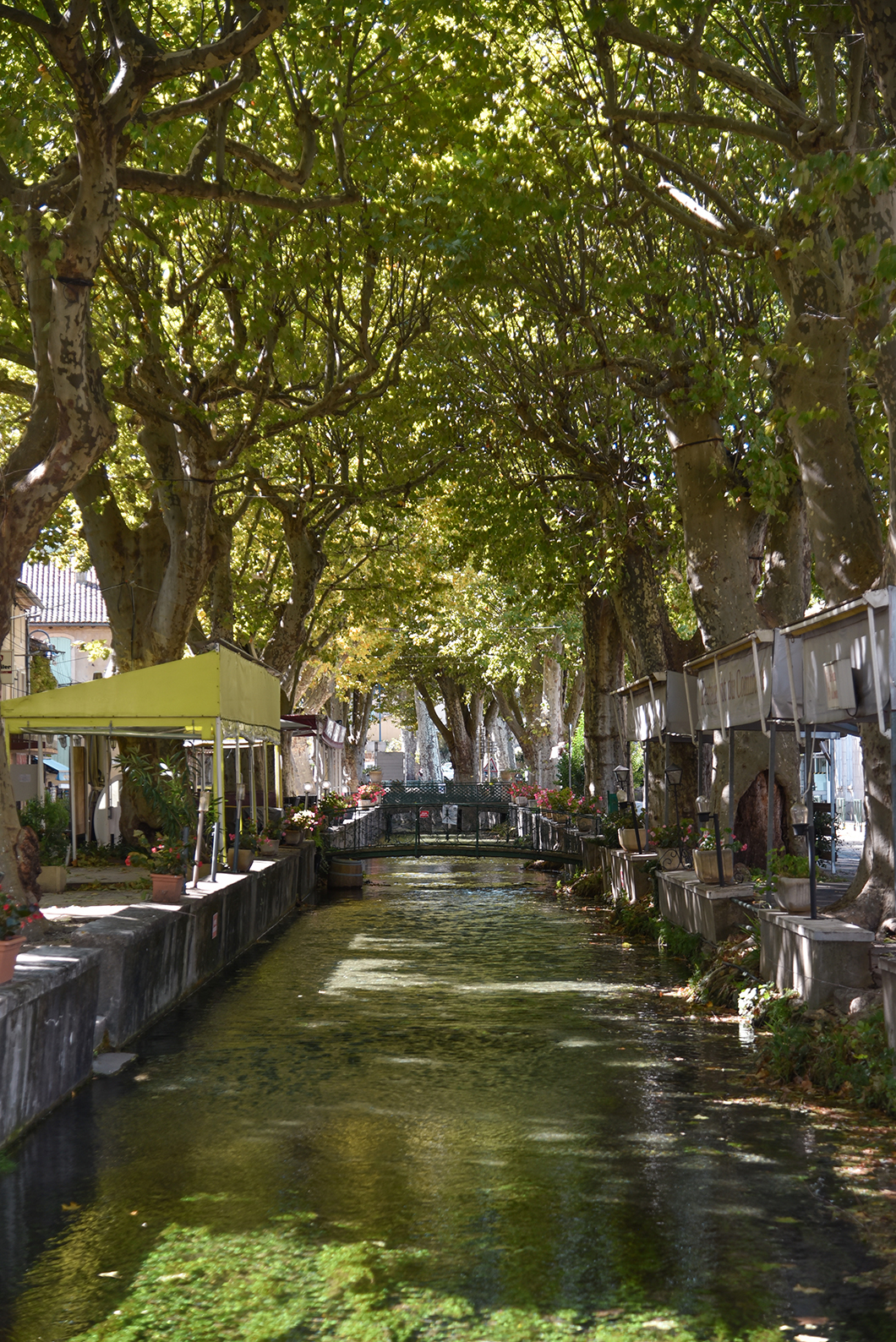 Visite de Goudargues, village en Provence Occitane