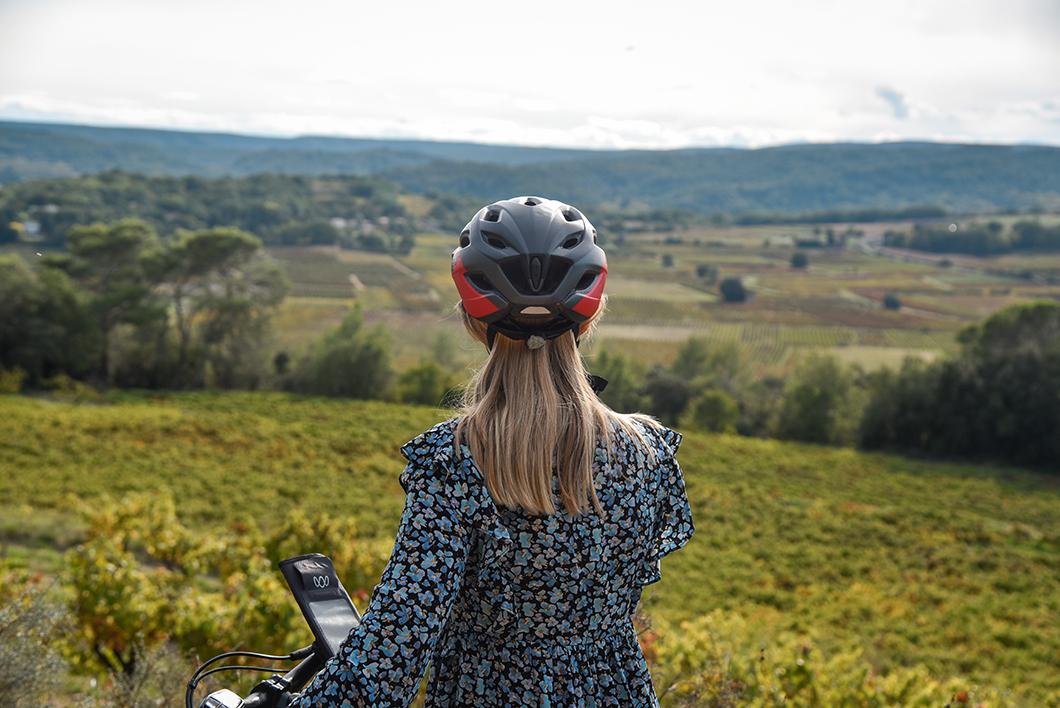 Vue sur les vignobles de Provence Occitane