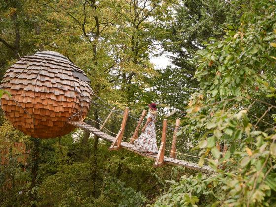 Week end insolite au Bois de Rosoy pour passer la nuit dans une cabane dans les arbres
