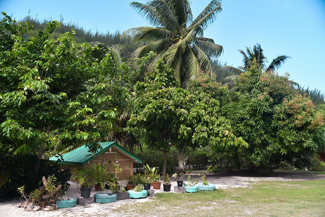 Où manger à Huahine en Polynésie Française ?