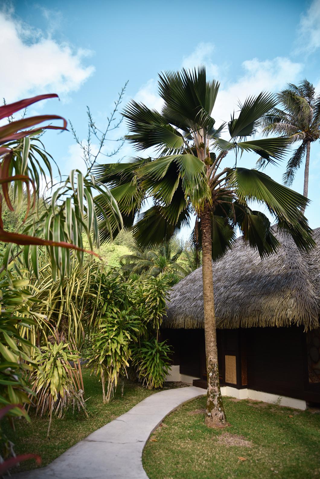 Le Mahana, top des hôtels à Huahine