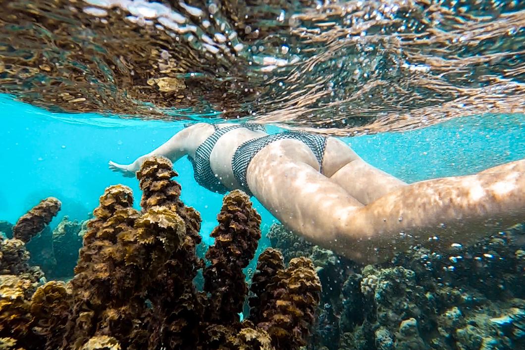 Découvrir le jardin de corail incontournable à Huahine