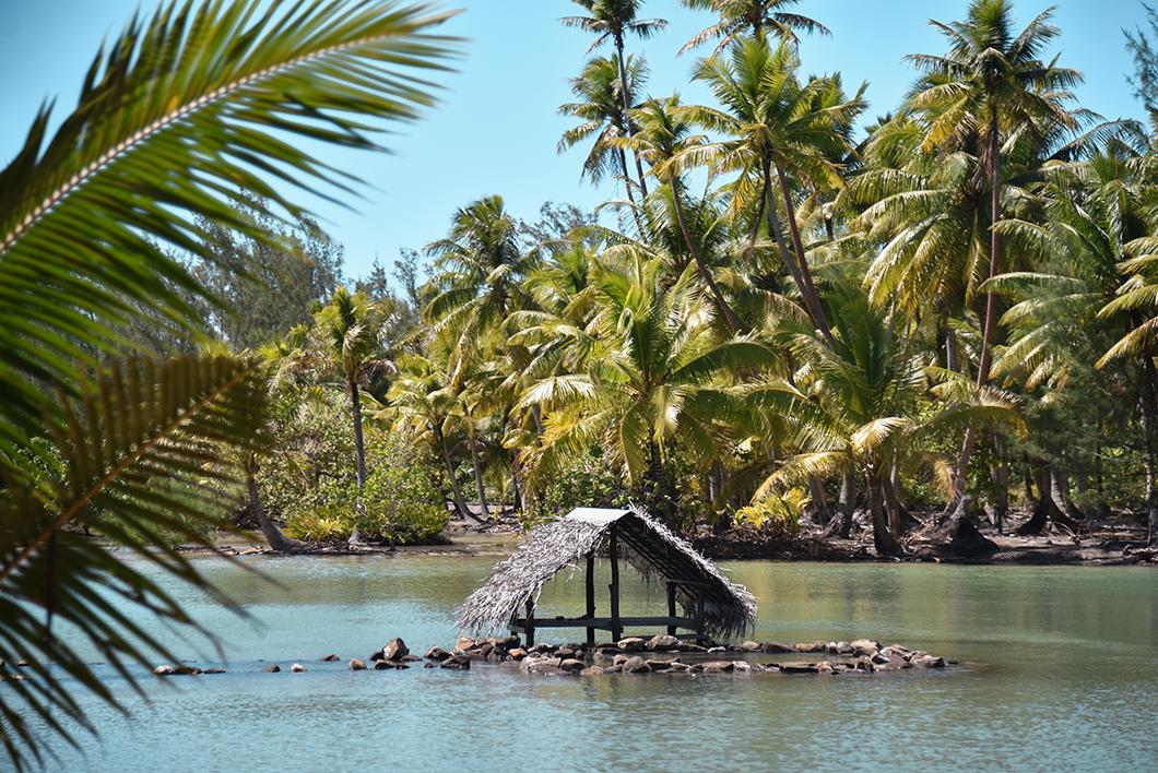 Activités à faire à Huahine, Observer les parcs à poissons de Maeva
