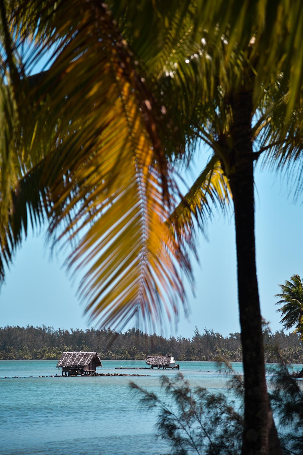 Que faire à Huahine ? Observer les parcs à poissons de Maeva