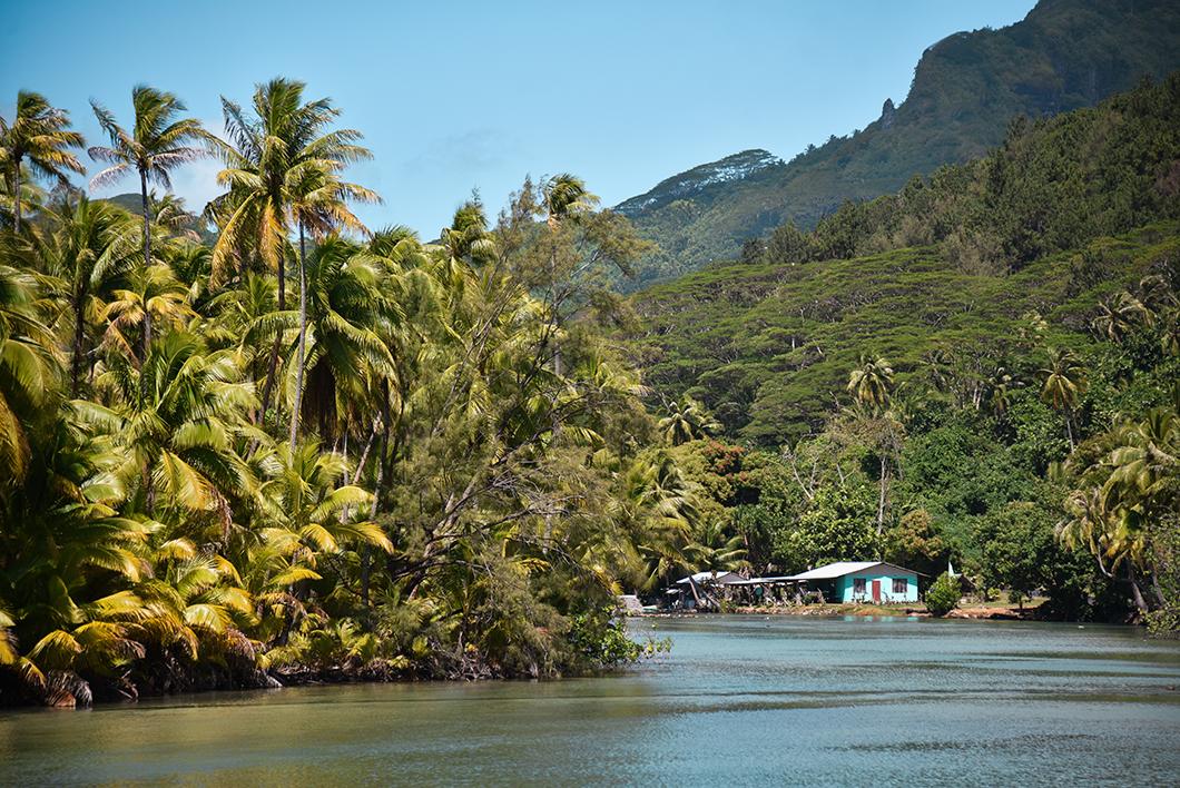 Observer les parcs à poissons de Maeva, activité incontournable à Huahine
