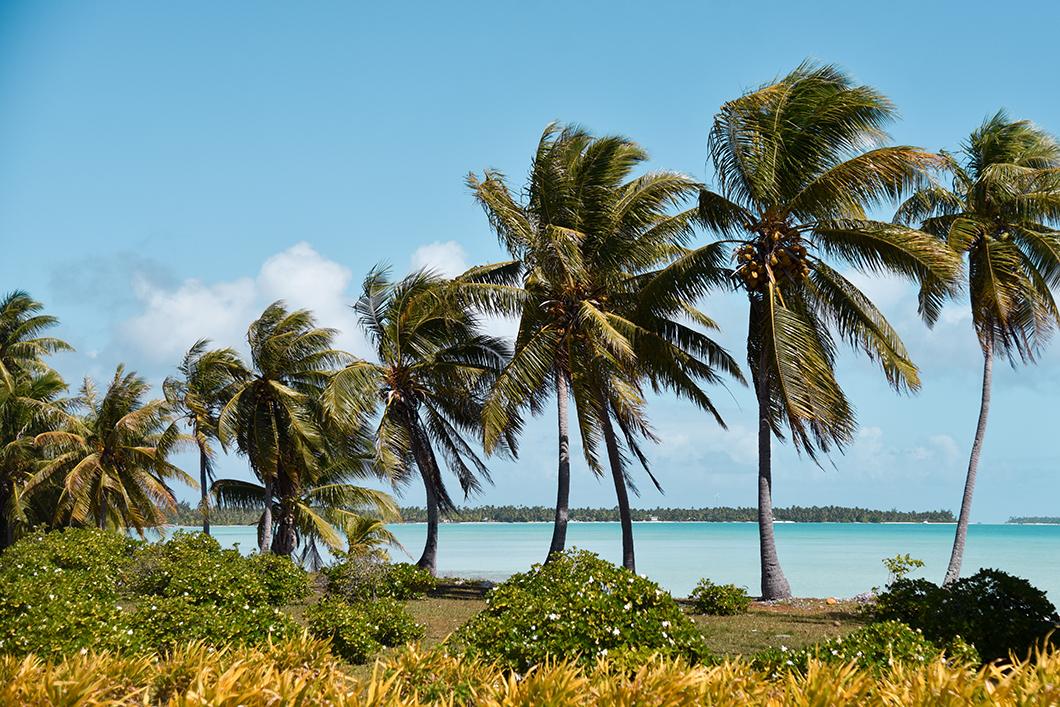Que faire en Polynésie Française ? Visiter l'île de Maupiti