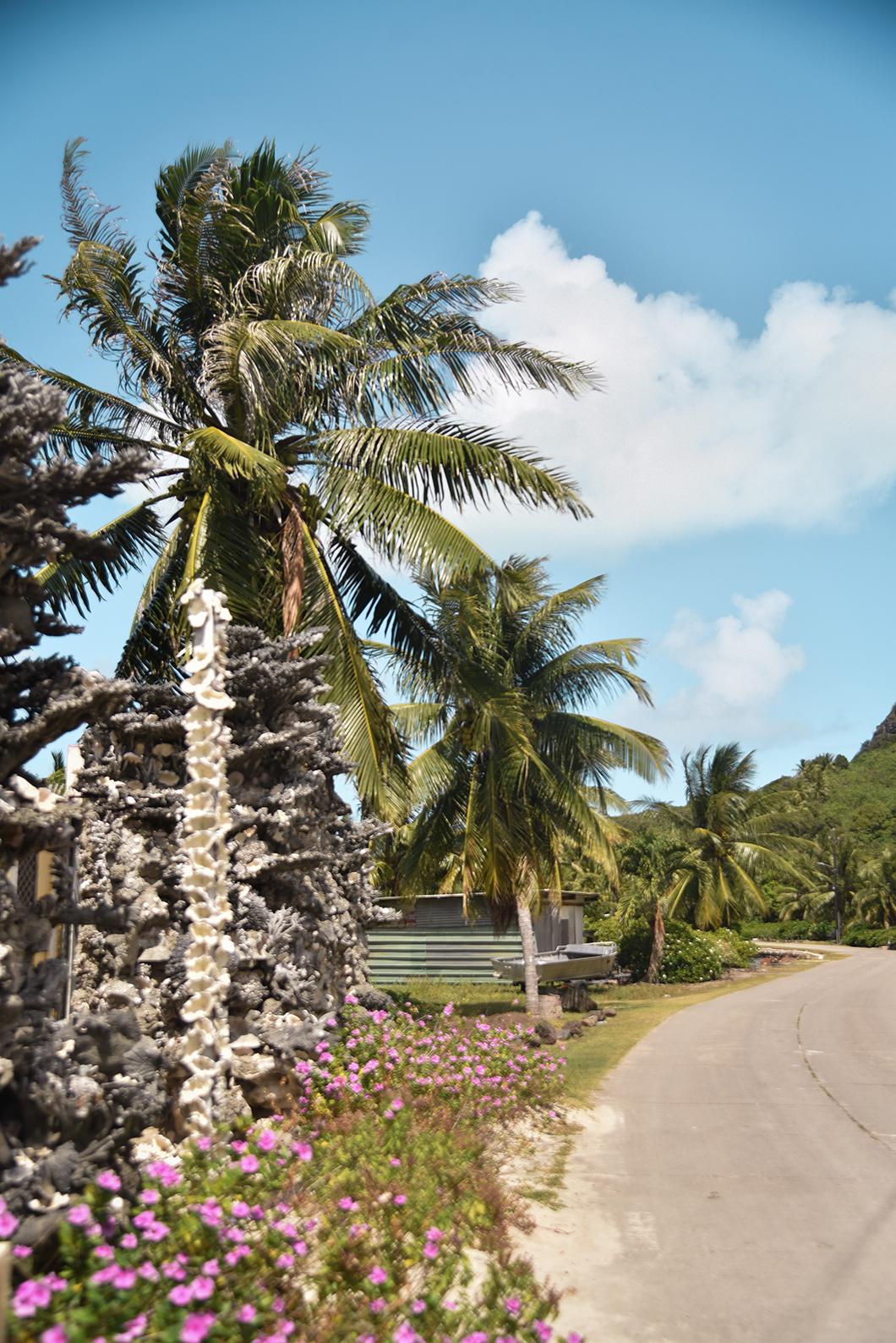 Que faire à Bora Bora ? Visite de l'île principale à vélo