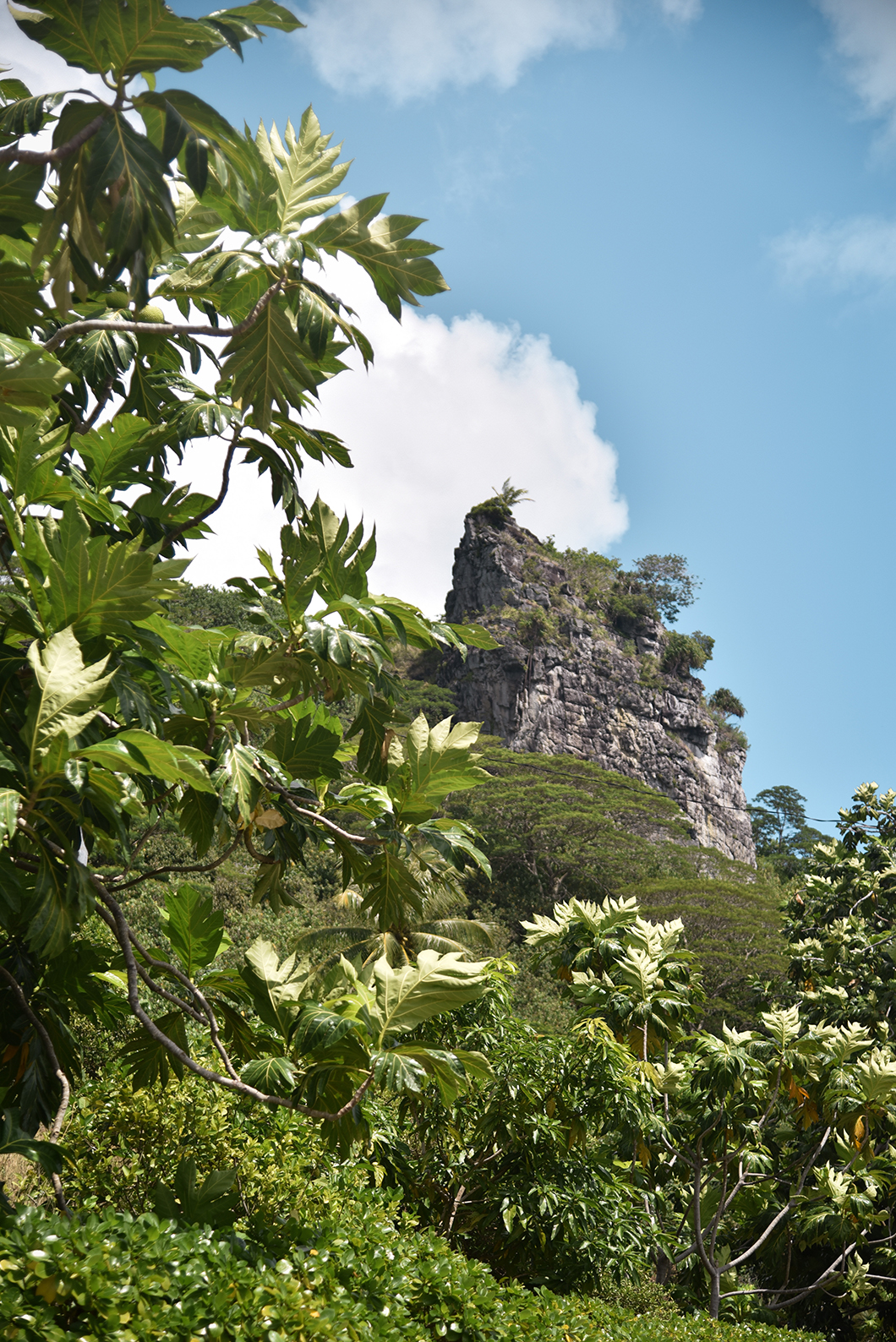 Que faire à Maupiti ? Visite de l'île principale