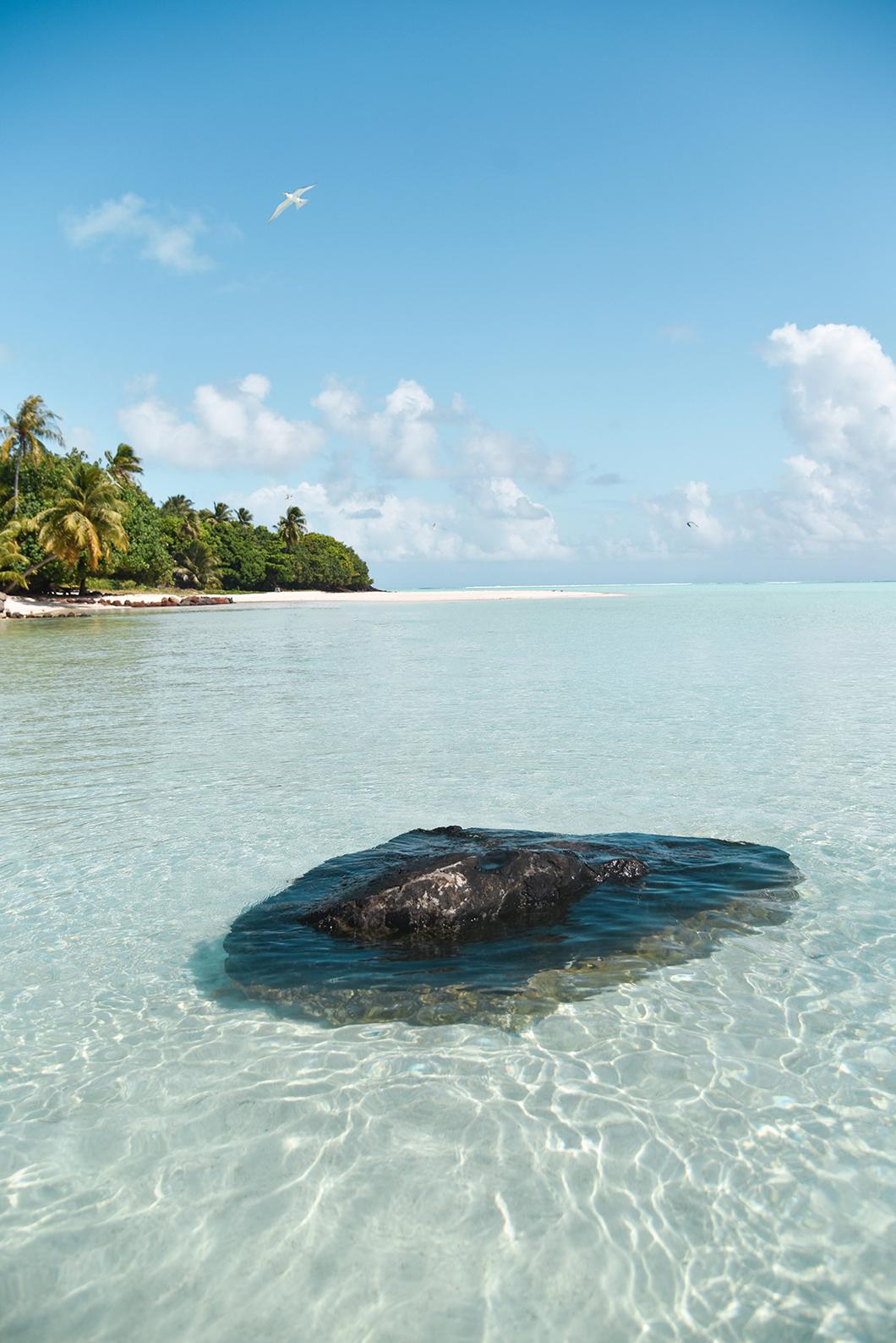 Quelles îles visiter en Polynésie Française ? Découvrir Maupiti