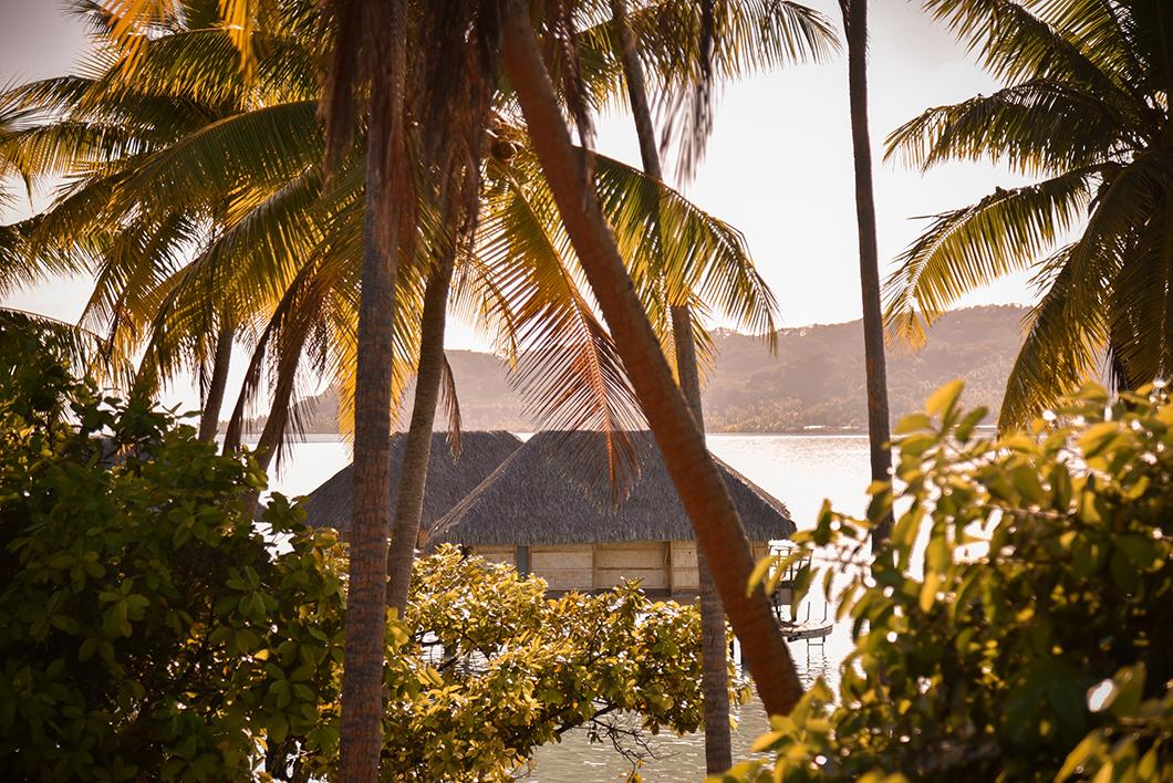 Vue depuis la terrasse du petit déjeuner au Taha'a Island Resort and Spa