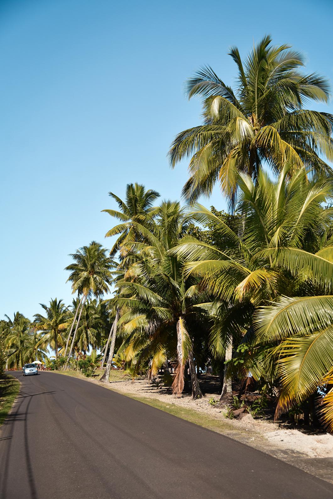 Faire le tour de l'île de Taha'a avec Terainui Tours