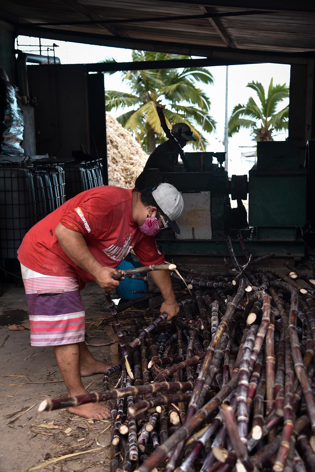 Découvrir la distillerie artisanale de rhum agricole Pari Pari