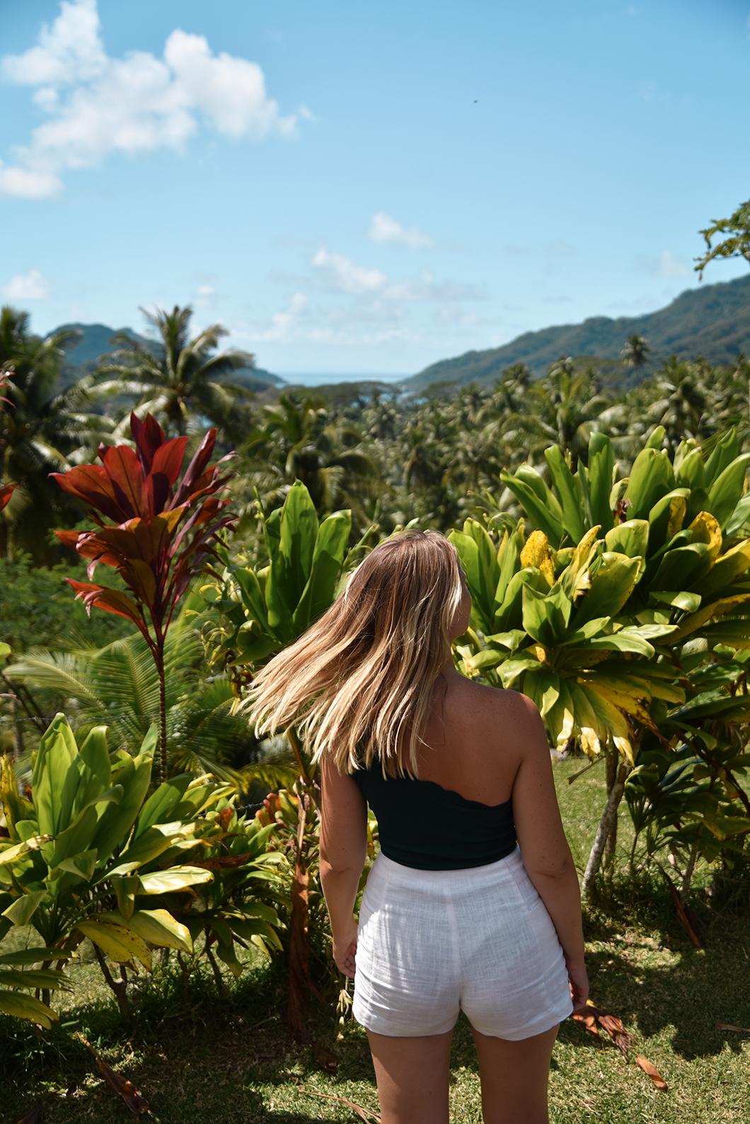 Les plus beaux points de vue de l'île de Taha'a