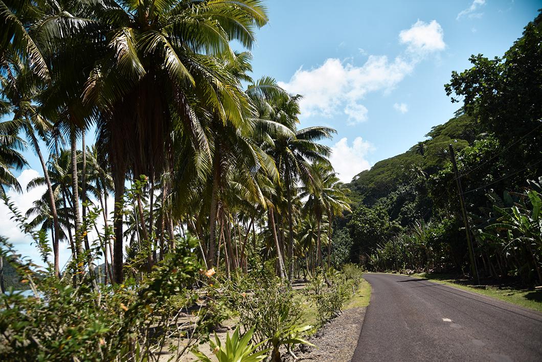 Tour de l'île de Taha'a en 4x4 avec Terainui Tours