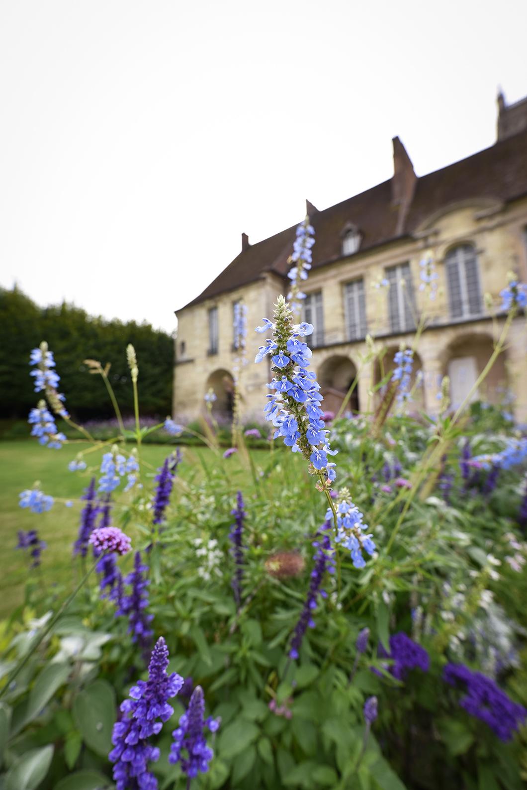 Meaux, destination proche de Paris