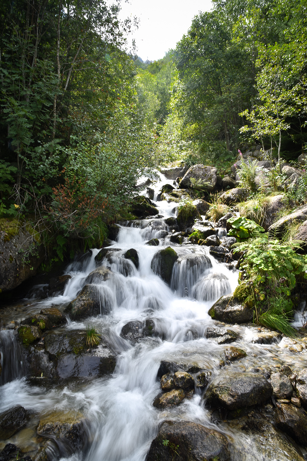 Activités incontournables à Chamonix