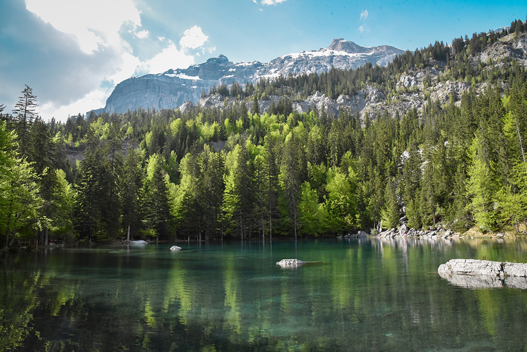 Vue sur le Lac Vert