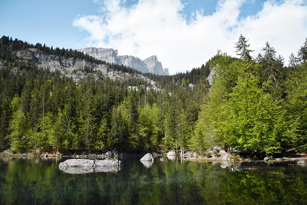 Randonnée au Lac Vert, activité à faire à Chamonix