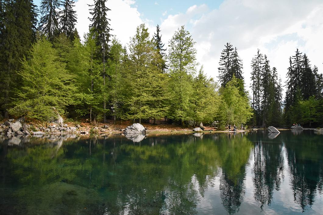 Aller au Lac Vert, incontournable à Chamonix