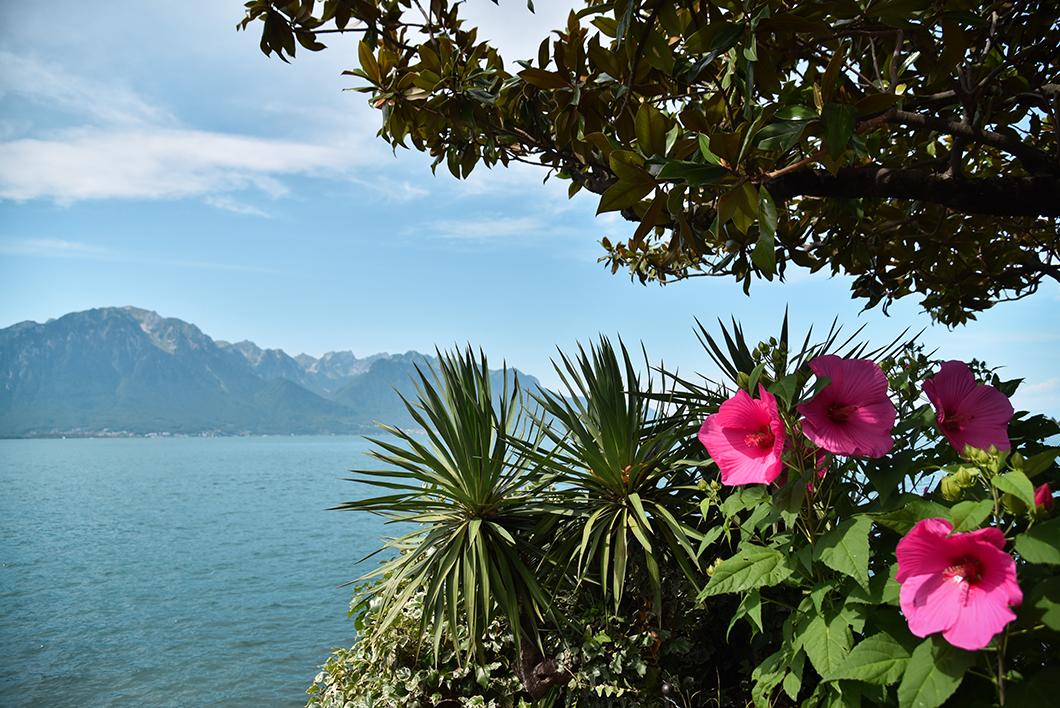 Que faire au Lac Léman ? Visiter Montreux