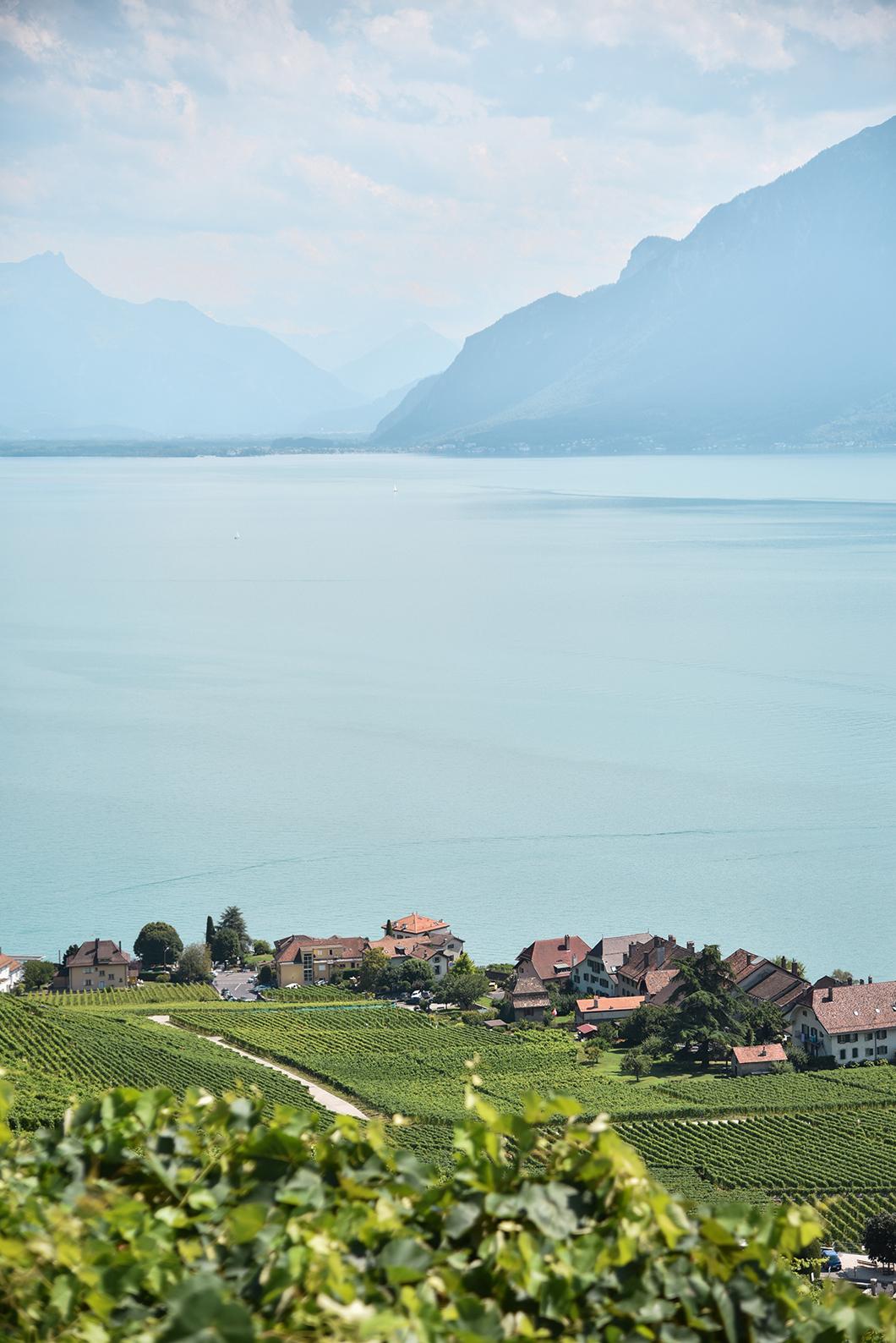 Lauxaux, nos spots préférés au Lac Léman en Suisse