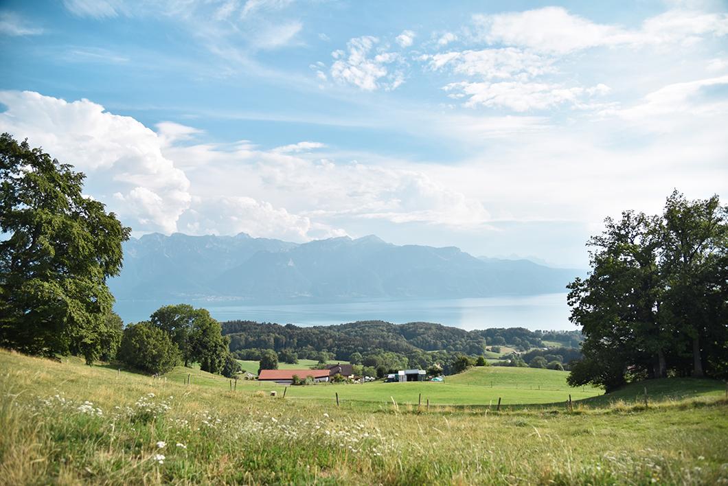 Que visiter au Lac Léman ? Monter au Mont Pèlerin