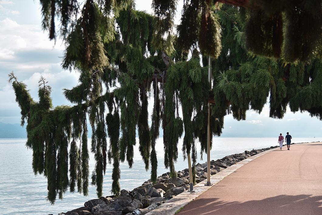Découvrir les quais d'Evian-les-Bains, Incontournables à visiter au Lac Léman
