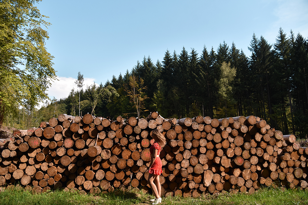 4 jours dans le Jura : activités, visites et bonnes adresses