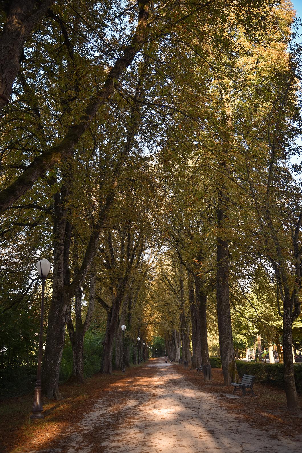 Découvrir Lons-le-Saunier, Incontournable à visiter dans le Jura