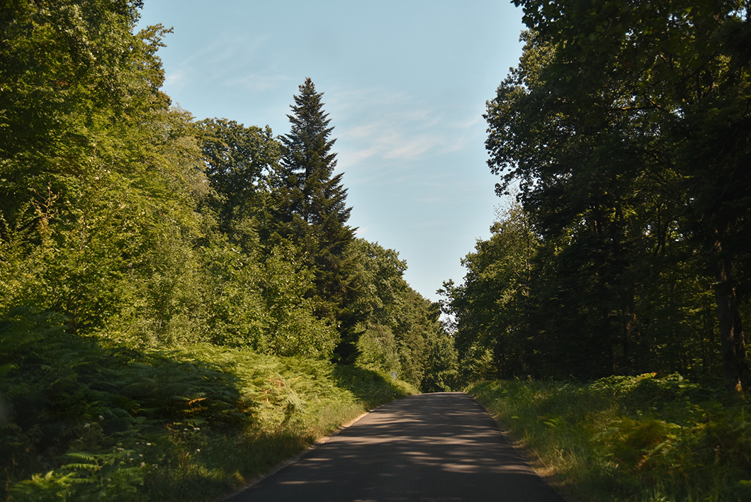 Les maisons bucheronnes de la Forêt Domaniale de Chaux dans le Jura
