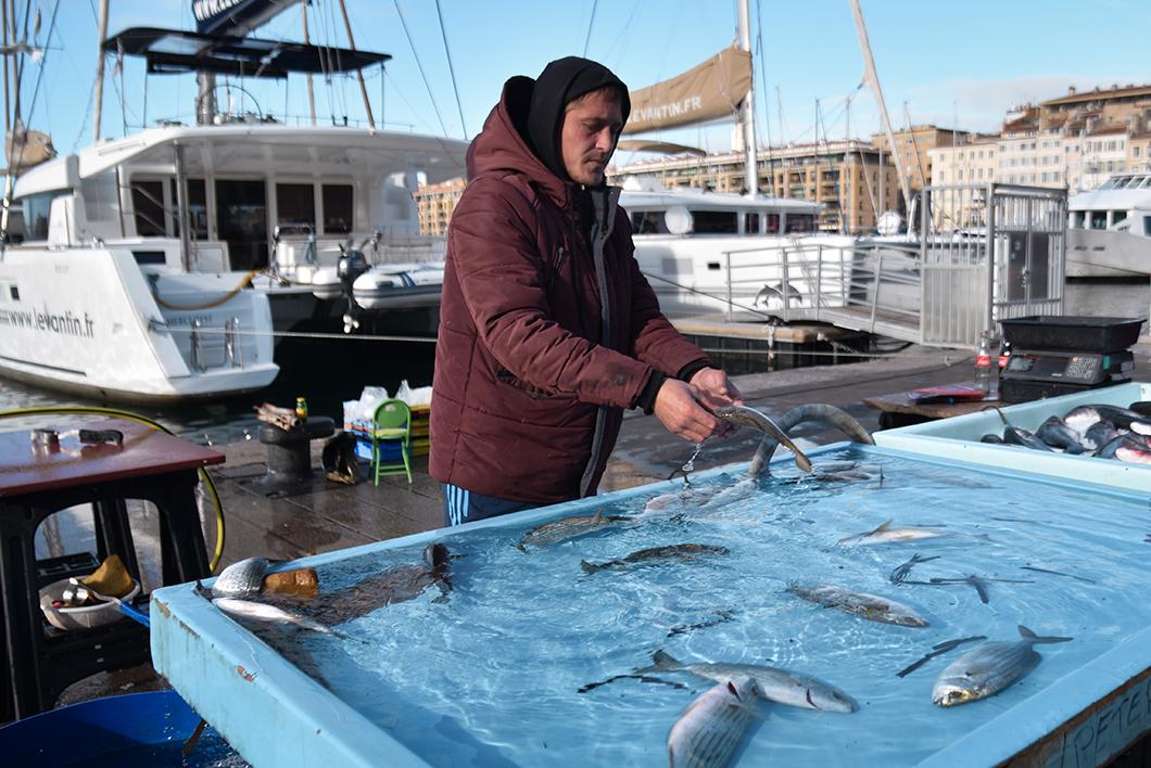 Aller au marché aux poisson sur le Vieux Port, incontournable à Marseille en hiver